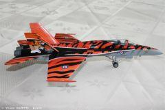 F18 Tiger Meet (5).JPG