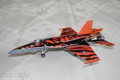 F18 Tiger Meet.JPG