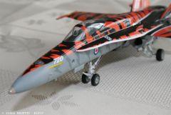 F18 Tiger Meet (3).JPG