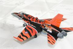 F18 Tiger Meet (2).JPG