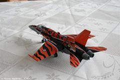 F18 Tiger Meet (1).JPG