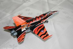F18 Tiger Meet (10).JPG
